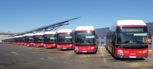 Nuevos Autobuses para TUSSAM en Sevilla